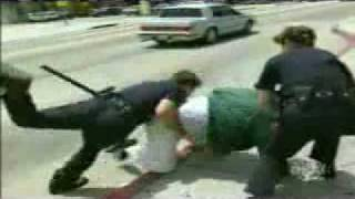 LAPD: Life On The Beat- Disturbing the Peace