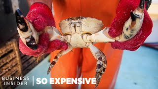 Why Stone Crab Claws Are So Expensive | So Expensive