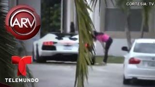 William Levy y Elizabeth Gutiérrez llegan juntos en Miami | Al Rojo Vivo | Telemundo