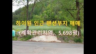 정선부동산 정선토지 하이원 인근 펜션부지 매매, 6억 …