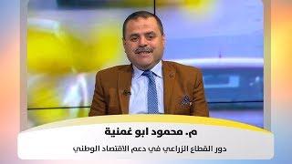 م. محمود ابو غمنية - دور القطاع الزراعي في دعم الاقتصاد الوطني