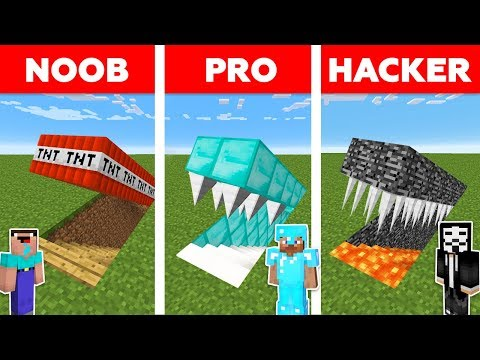Minecraft NOOB vs PRO vs HACKER : HIDDEN TRAP CHALLENGE in m