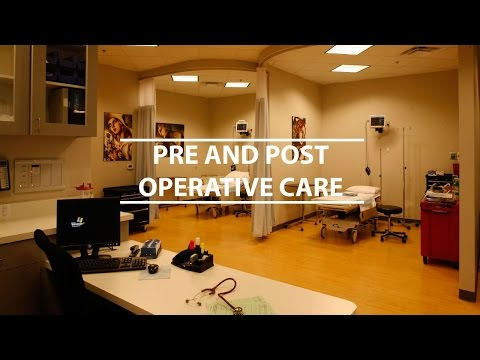 Pre and Post Operative Care