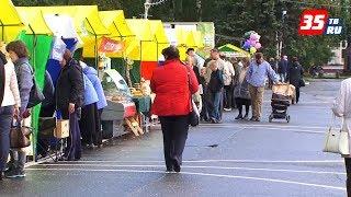 Масштабная сельскохозяйственная ярмарка пройдет в Вологде 22 сентября