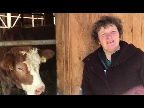 Bio Suisse: Kathrin Schneider zur Kraftfutterreduktion