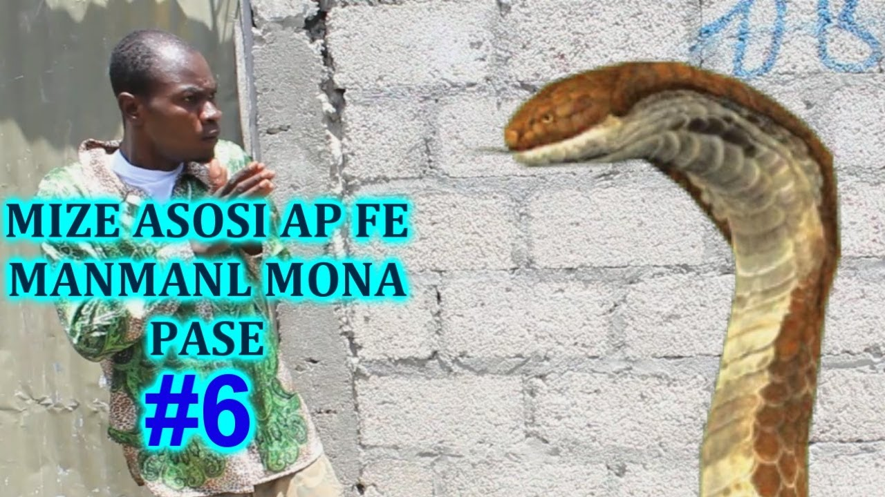 Download MIZE ASOSI AP FE MANMANL MONA PASE #6