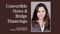 Convertible promissory note & bridge financing