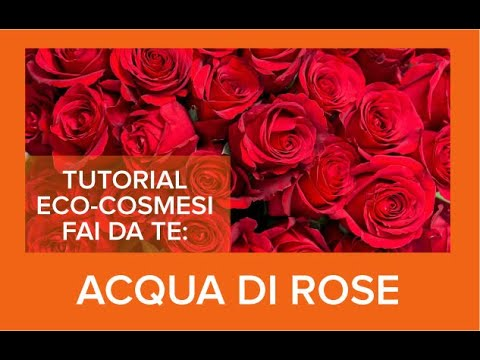 Acqua di ROSE: tutorial