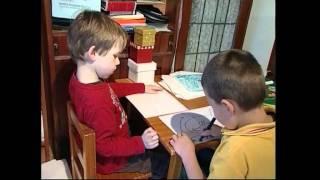 Guiding Children Behaviour Fdc Excerpt