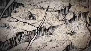 BEREFT - WE WEPT (official album track)