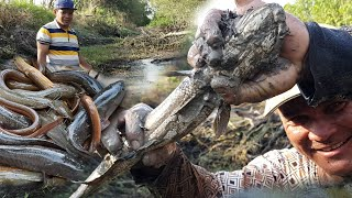 Primitive Technology - Amazing Man Catch A lot Of Fish - Net Fishing In Forest -Traditional Fishing