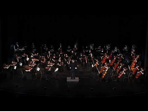 LVA ORCHESTRA - Philharmonic Orchestra - Spring Concert