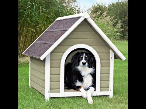 How To Build A Dog House Outdoor Dog Kennel Plan And