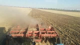 Зерновые поля задискованы!