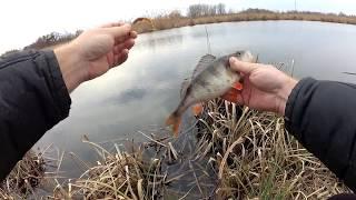 Рыбалка на малой реке