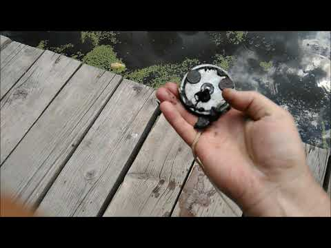 Ищем Астрагал, живой воды попьём у родника, побросаем поисковый магнит