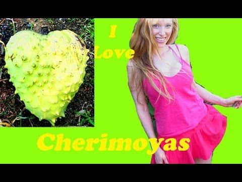 Cheerfully Chewing Cherimoyas