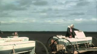 """Марина Ладынина, Сергей Лукьянов - Не за теми дальними морями (""""Кубанские казаки"""")"""