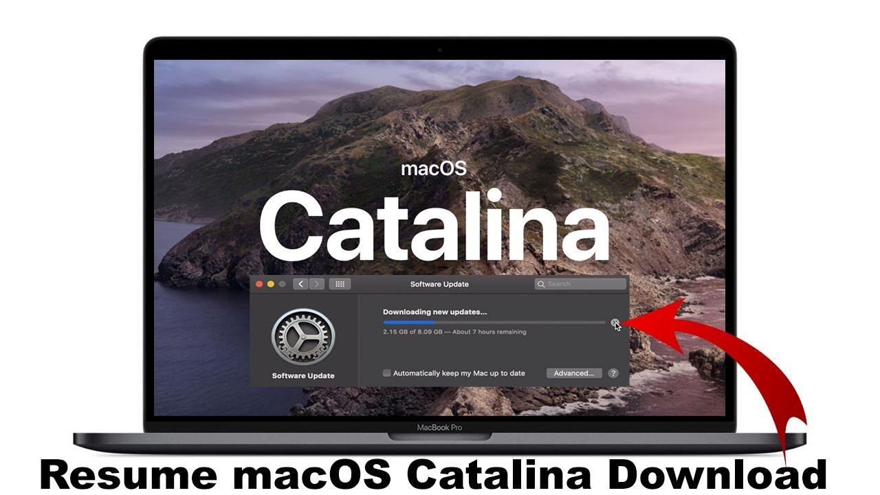 Macos Update To Catalina