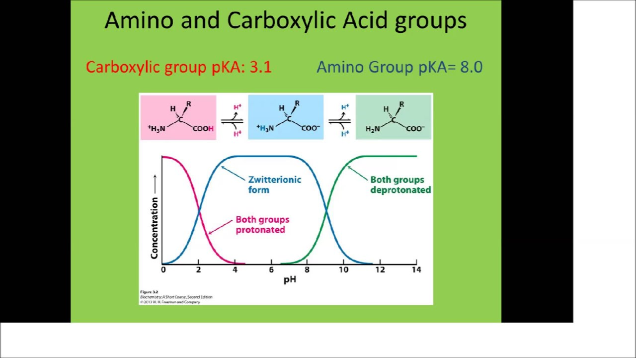 amino acid pka and ph relationship