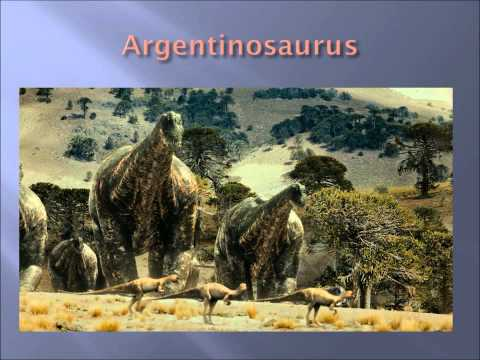 All Species Of Sauropods