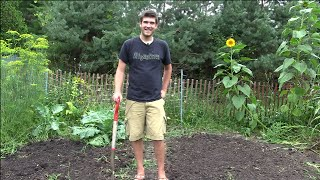How to Plant a Fall Garden & What is Good to Plant | MIgardener