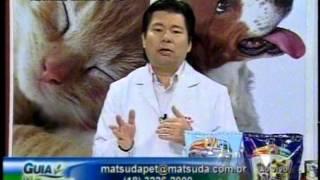 Matsuda Pet: Ciclo Estral em Cadelas