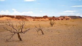 Монгольская одиссея Пустыня Гоби (полный фильм)