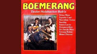 Tiroler Holzhacker Bub'n