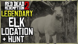WHERE TO FIND THE LEGENDARY ELK LOCATION + HUNT - RED DEAD REDEMPTION 2