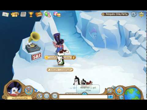 Animal jam penguins only party walkthrough youtube