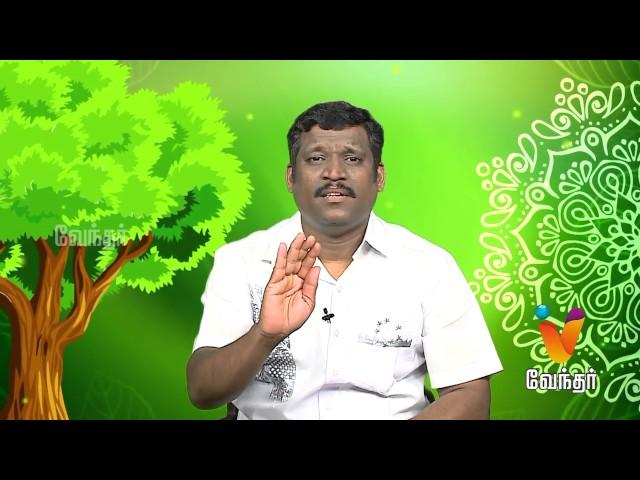 Marunthilla Maruthuvam |Putham Puthu Kalai| (07/07/2017) | [Epi-1041]