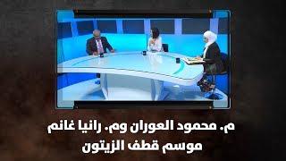 م. محمود العوران وم. رانيا غانم - موسم قطف الزيتون