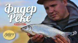 Ловля на фидер осенью Рыбалка на реке Кубань
