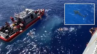 video: Watch: US Coast Guard shoots at a shark as it approaches swimmers