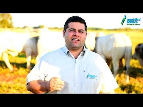Confira o convite do Flavio Sandim para o 16º Mega Leilão Genética Aditiva e Convidados
