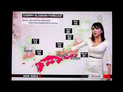NHK World Weather March 28 2014