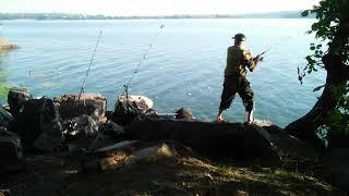 Рыбалка на реке Днепр Чудесный клёв и улов рыбалка Днепр