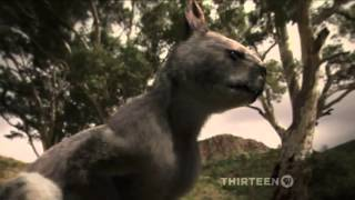 Australia the First four Billion years - Strange creatures