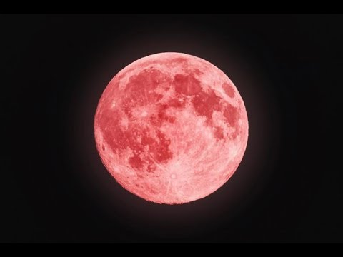 The Full Moon Pink Live April 29 2018