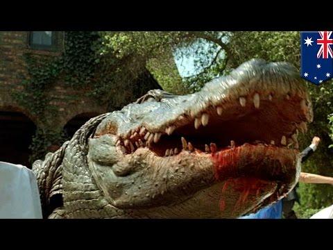 В Австралии крокодил съел рыбака
