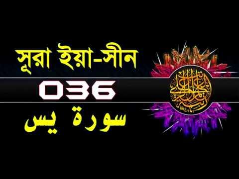 Download ( 036 ) সূরা ইয়াসীন বাংলা অর্থসহ..Surah Yasin With Bangla Translation