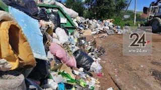 В садовых массивах Нижнекамска не хватает мусорных контейнеров