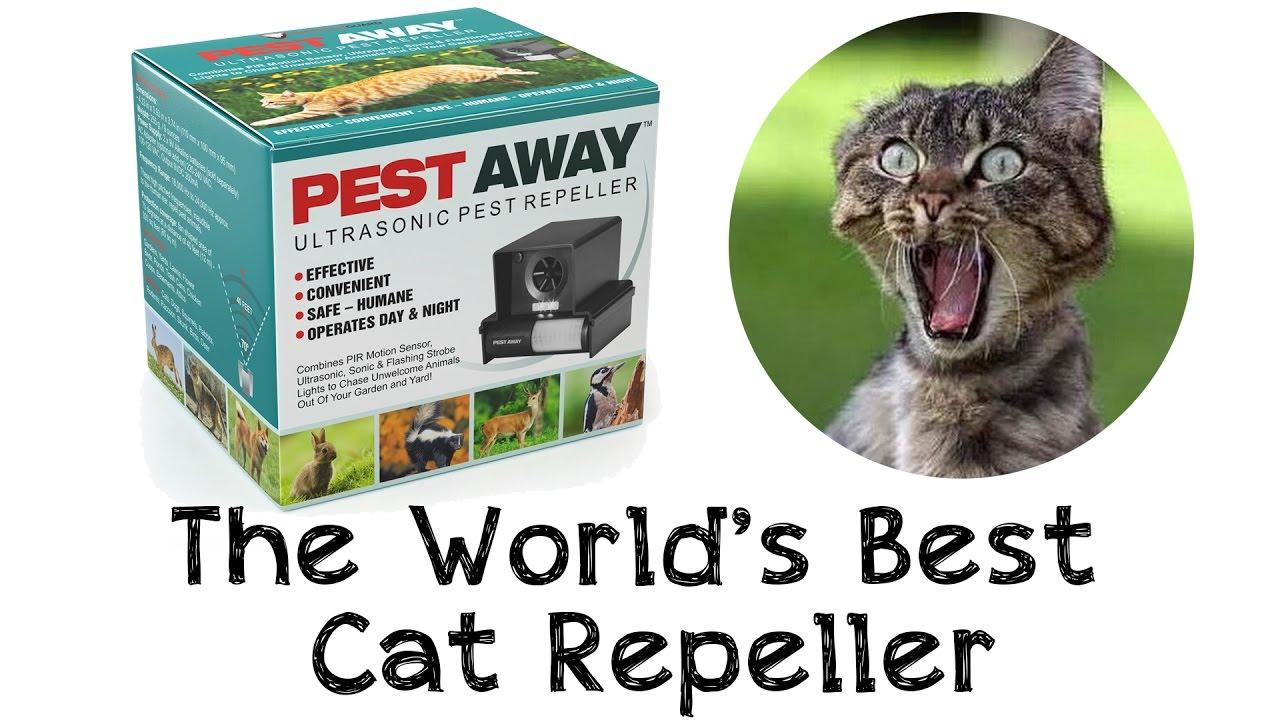 Best ultrasonic pest repeller australia - YouTube