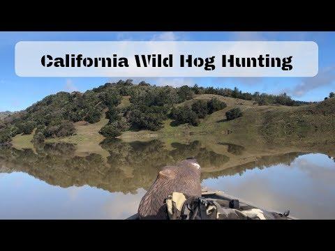 Wild Hog Hunting (2019)