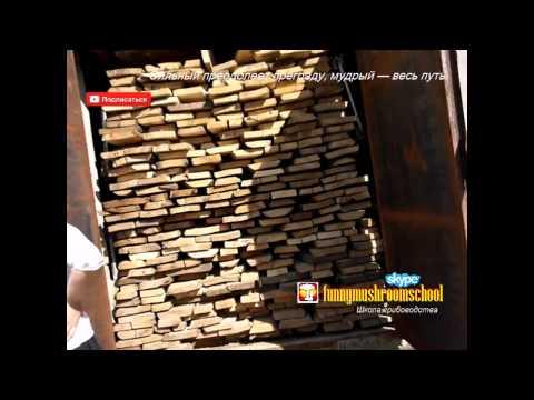 Сушильные камеры для древесины и пиломатериалов - HUAYI