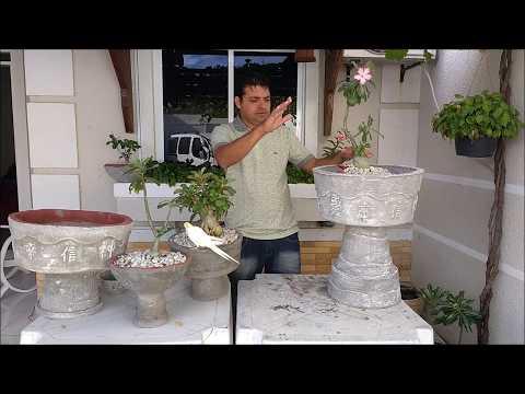 Como fazer vaso de cimento taça grande mais fácil jarro passo a passo Concrete cup vase