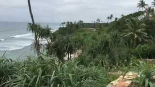 FFG Travel Diaries: Sri Lanka
