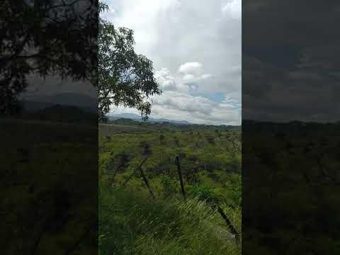 Rural area near Janico, Santiago Province. The Dominican Republic.
