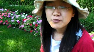Algonquin College - Ottawa - Esl + Dental Assiting - Liu Sinuoyang - China (mandarin Version)